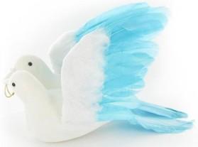 Couple de colombes avec alliances, turquoise
