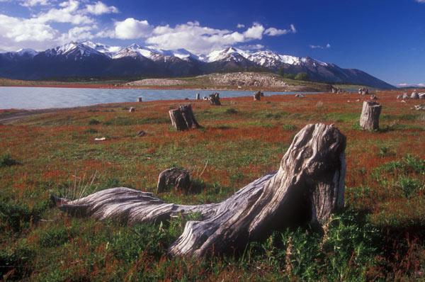 Parc de Terre de feu à Ushuaia