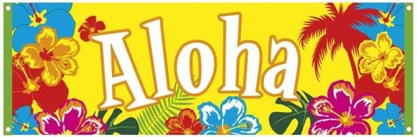 Bannière Ahoha