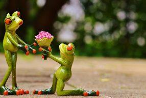 7 astuces pour un mariage écolo
